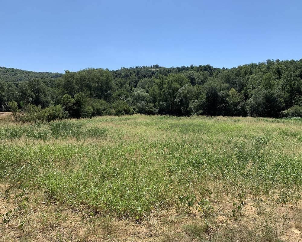 Terreno agricolo in Vendita in Via Ortana a Penna in Teverina Rif. 18pen