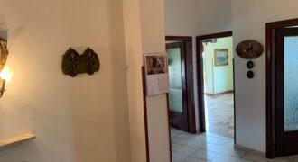 Appartamento in Affitto -Rif.345